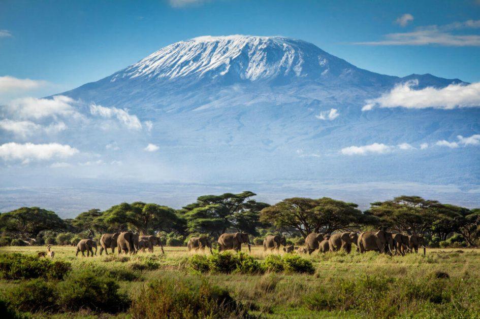 Kilimandzharo