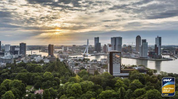 Роттердамский марафон (NN Marathon Rotterdam) 2019