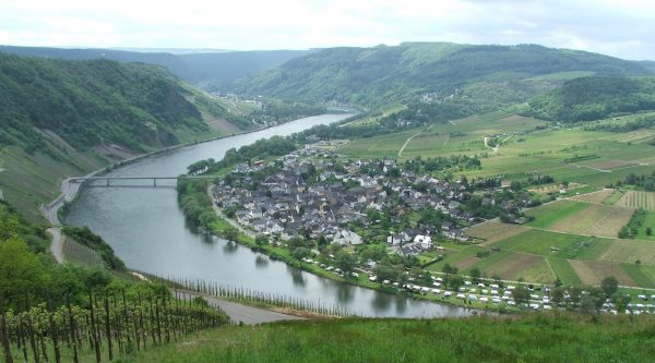 Люксембургский полумарафон «Дорога вина» (ING Route du Vin Semi-Marathon) 2019
