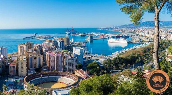 11-й Малагский марафон (Zurich Maratón Málaga) и полумарафон 2020. Малага, Испания. Декабрь 2020