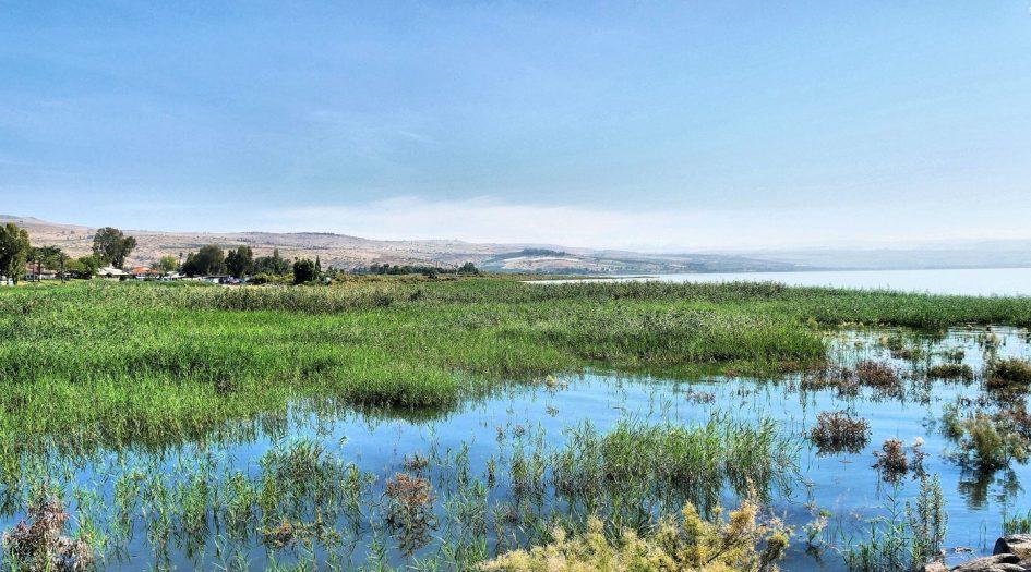 марафон и полумарафон Галилейского моря в Тверии (Sea of Galilee Tiberias International Winner Marathon)