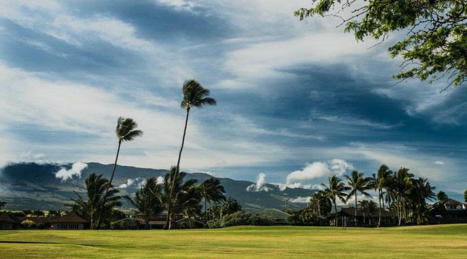 Maui Oceanfront Marathon and Half Marathon