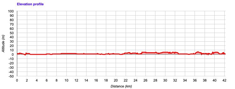 Course altitude profile of the Miami Marathon 2021